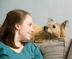 woman and dog looking into each others eyes