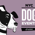 Dog Events in New York City in June