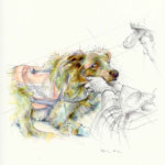 Salute to Search & Rescue Dogs Art Contest