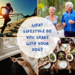 What's your dog's lifestyle?